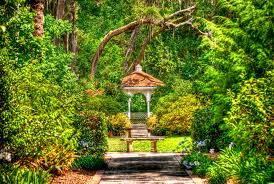 top 3 gardens in around orlando fl experience nature in the city beautiful