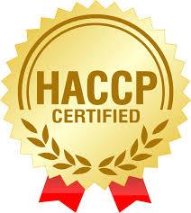 Iso 9001 Certification Pune Maharashtra Cheap Iso Certification