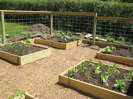 raised bed garden fence raised bed garden box designs with raised bed garden fence design