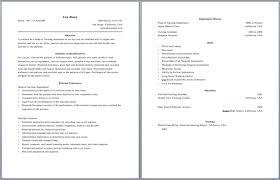 2 Page Resume Examples Pusatkroto Com