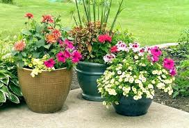 unusual flower pots outdoor flower pots planters amazing and flowerpot garden gifts ceramic plant iron art
