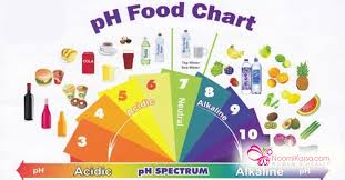 Pral Alkaline Chart Alkaline Living And Recipe Noomikajsa