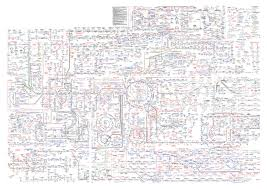Roche Biochemical Pathways Wall Chart Biochemistry