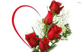 Free Rose Image, Download Free Clip Art ...
