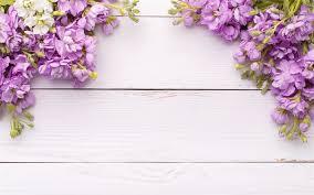 Purple Flowers Backgrounds Flower Wood Texture Background Wallpaper For Desktop