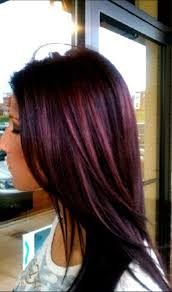 Best 25+ Burgundy plum hair ideas on Pinterest   Plum hair colour ...