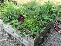 Herb Garden Grow A Garden Anywhere