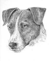 Disegni Di Cani A Matita Semplici