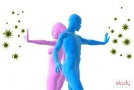 Imagini pentru sistemul imunitar
