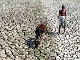 maharashtra s water crisis lies damned lies and statistics water scarcity reuters