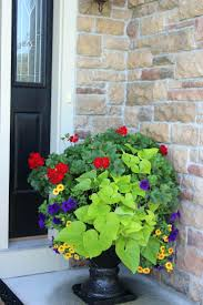 Container Gardening For Small Spaces  Period LivingContainer Garden Ideas Uk