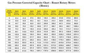 Romet Rotary Meters