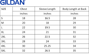 Gildan Ultra Cotton Size Chart Youth Best Picture Of Chart