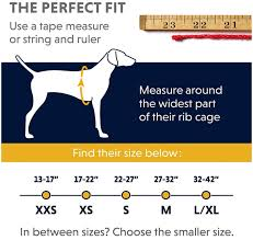 Ruffwear Size Chart The Best Top 3 Dog Rappelling Harness Under 99