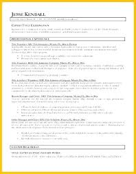 What Is A Good Resume Title Adorable Best Resume Headline For Students Good Titles Examples Sample