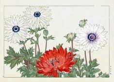 <b>Poppy</b>. Tanigami Konan Western <b>Flower</b> Woodblock <b>Print</b> from 1917 ...