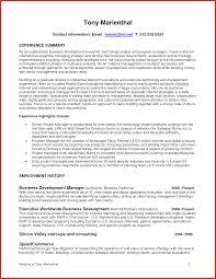 It Director Resume Industrial Carpenter Sample Resume