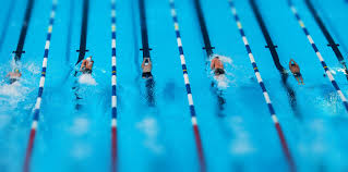 olympic swimming pool lanes. Olympic Swimming Pool Top View. Games Results 2016: Katie Ledecky, Michael Phelps Lanes