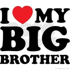 I Love My Brother Quotes Mesmerizing I Love My Big Brother DesiBucket