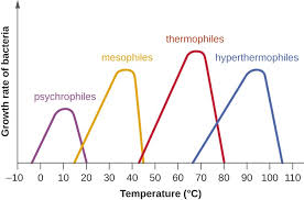 How Long Can You Survive In Cold Water Chart Temperature And Microbial Growth Microbiology