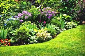 Small Picture organic gardening at home GardenABCcom
