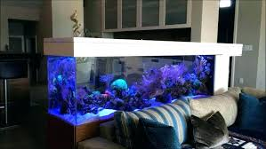 Fish Tank In Bedroom Bedroom Fish Tank Aquarium In Bedroom Fish Tank Bedroom  Fish Tank Bedroom . Fish Tank In Bedroom ...