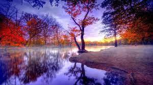 Amazing Nature View HD wallpaper
