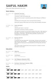Assistant Surveyor Resume samples