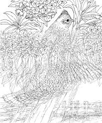 Small Picture Challenging Printable Coloring Pages Coloring Coloring Pages
