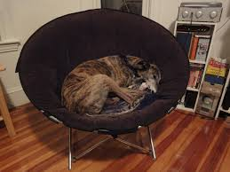 Furniture Double Papasan Chair Frame