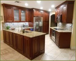 Preassembled Kitchen Cabinets Kitchen 2017 Premade Kitchen Cabinets Ikea Pre Assembled Kitchen