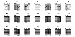 Bass Guitar Chords An In Depth Guide To Understanding Them