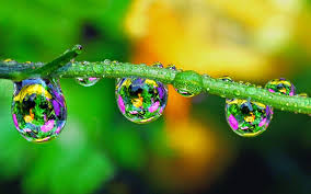 cool hd 3d pictures of water drop. Fine Pictures Wallpapers Title 3D Water Drops Images Wallpapers With High Quality With Cool Hd 3d Pictures Of Drop A