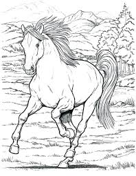 Wild Horse Coloring Pages To Print Trustbanksurinamecom