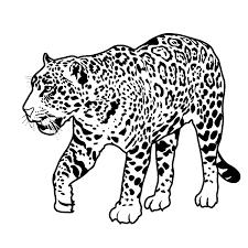 Jaguar Coloring Pages Free Online Printable