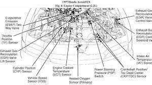 97 accord engine diagram wiring library 97 honda accord engine diagram auto electrical wiring diagram u2022 1994 honda accord engine diagram