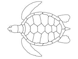 Turtle Pattern Adorable Coloring Pages For Children Is A Wonderful Activity That Encourages