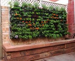 Small Picture inspiration vertical veg an absolutely awesome container gardener