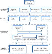 Drug Testing Flow Chart Assessment Flow Chart For Testing Drug Actions Using