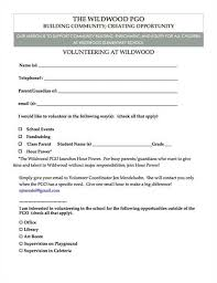 essay volunteering essay