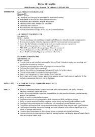 Freight Coordinator Resume Samples Velvet Jobs