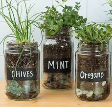 Herb Garden With Old Glass Jars black chalk paint + chalk + pebbles