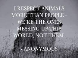 Love Animals Quotes Awesome Download Love Animal Quotes Ryancowan Quotes