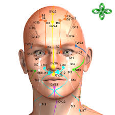 Acupressure Face Chart Meridian Points For Acupuncture Tcm Acupressue Shiatsu