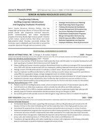 Senior Manager Resume Template Custom 44 Professional Senior Manager Executive Resume Samples LiveCareer