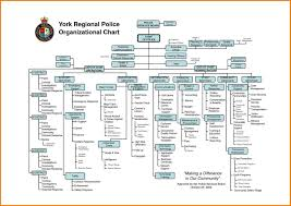 57 Prototypical Microsoft Organizational Chart Software