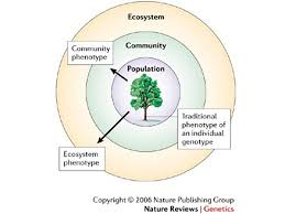 Venn Diagram Living And Nonliving Things Chapter 19 Using Natural Resources Chapter 19 1 Notes