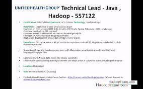 Download Hadoop Developer Resume