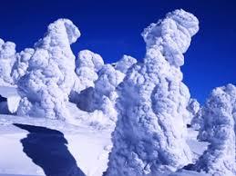 「蔵王 樹氷」の画像検索結果