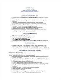 Buyers Resumes Buyer Purchasing Resume